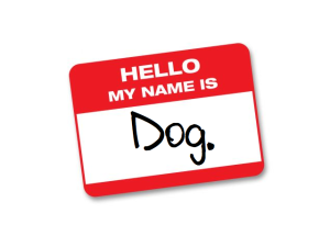 hello my name is dog